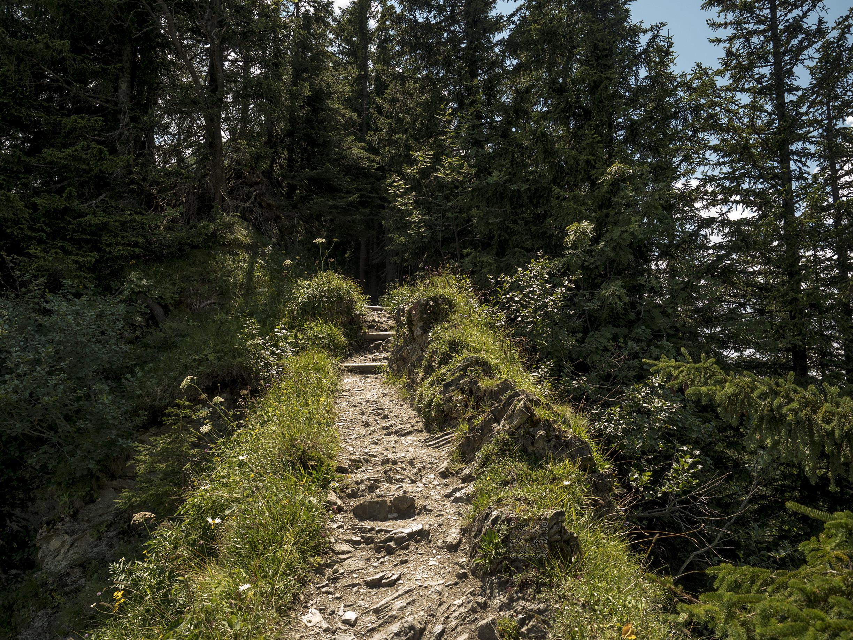 Runter nach Oberstdorf